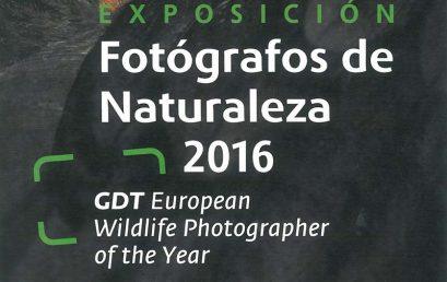 """El Cabildo de La Gomera y la Fundación CajaCanarias acercan a La Gomera la exposición """"Fotógrafos de la Naturaleza"""""""